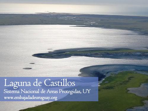 Laguna Castillos - Reserva Ecologica en Uruguay